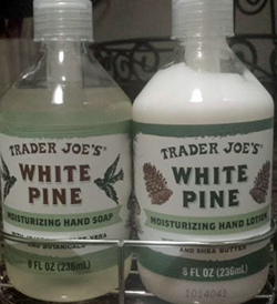 Trader Joe's White Pine Hand Soap & Lotion