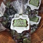 Trader Joe's Magic Beans