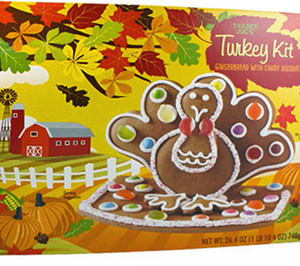 Trader Joe's Gingerbread Turkey Kit