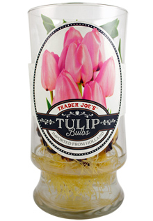 Trader Joe S Tulip Bulbs Reviews Trader Joe S Reviews
