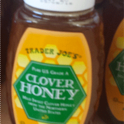 Trader Joe's Clover Honey