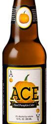 Trader Joe's Ace Pumpkin Cider