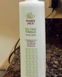 Trader Joe's Tea Tree Tingle Body Wash