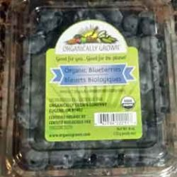 Trader Joe's Organic Blueberries