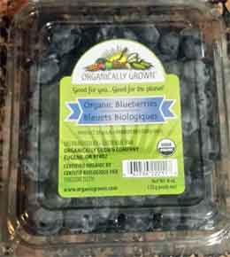 Trader Joe's Organic Blueberries
