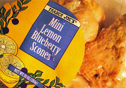 Trader Joe's Mini Lemon Blueberry Scones