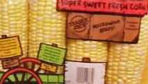 Trader Joe's Sweet Fresh Corn on the Cob