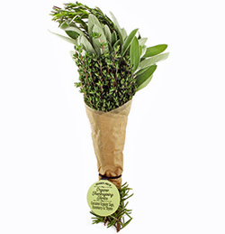 Trader Joe's Organic Thanksgiving Herb Bouquet