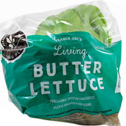 Trader Joe's Living Butter Lettuce
