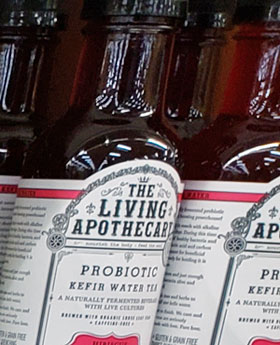 The Living Apothecary Probiotic Kefir Water Tea