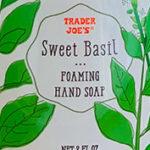 Trader Joe's Sweet Basil Foaming Hand Soap