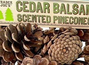 Trader Joe's Cedar Balsam Scented Pinecones