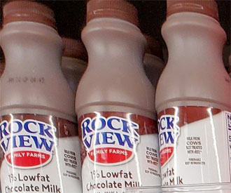 Rock View 1% Low Fat Chocolate Milk