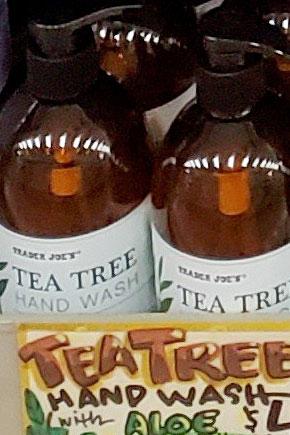 Trader Joe's Tea Tree Hand Wash Soap with Aloe